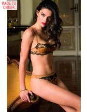 Lise Charmel Splendeur Soie Amber Bra Collection